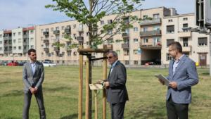 aleja warciarzy fot. zzm4 300x169 - Poznań: Aleja Warciarzy na urodziny Warty Poznań
