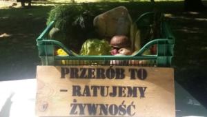 piknik w starym zoo fot. stare zoo6 300x170 - Poznań: Sąsiedzkie Inspiracje w Starym Zoo