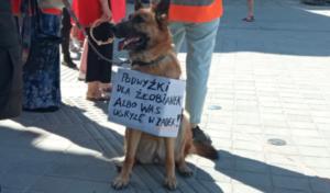 protest pracownic zlobkow fot. l. lada5 300x176 - Poznań: Pracownice żłobków chcą wyższych pensji. I dały prezydentowi... pieluchy