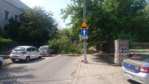 przewrocone drzewo fot. smmp2 300x169 - Poznań: Spadające dachówki i powalone drzewo. Pomogli strażacy