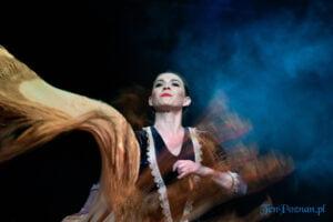 Flamenco Poznań - koncert fot. Sławek Wąchała