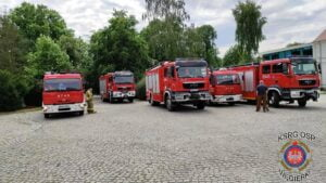 obława na łosia fot. KSRG OSP Węgierki