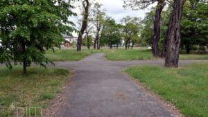Park Tysiąclecia fot. PIM