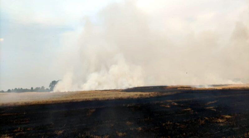 pożar zboża fot. OSP Jastrowie