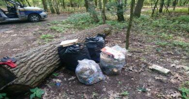 śmieci w lesie fot. SMMP