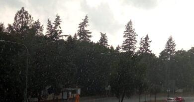deszcz fot. L. Łada