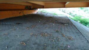 koczowisko bezdomnych po posprzątaniu fot. SMMP