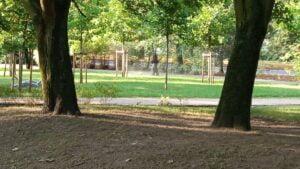 park Wodziczki, koszenie trawy fot. L. Łada