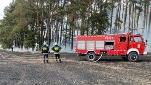 pożar pod Trzianką fot. Radosław Gostołek, Nadleśnictwo Trzcianka