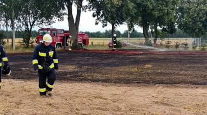 pożar pola fot. OSP Wysoka