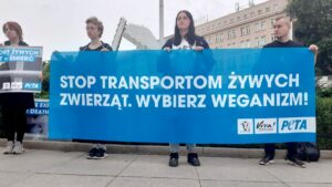 Stop Live Exports fot. Viva