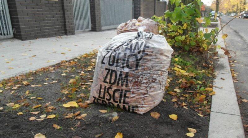 liście zebrane z ulicy, worek, fot. ZDM