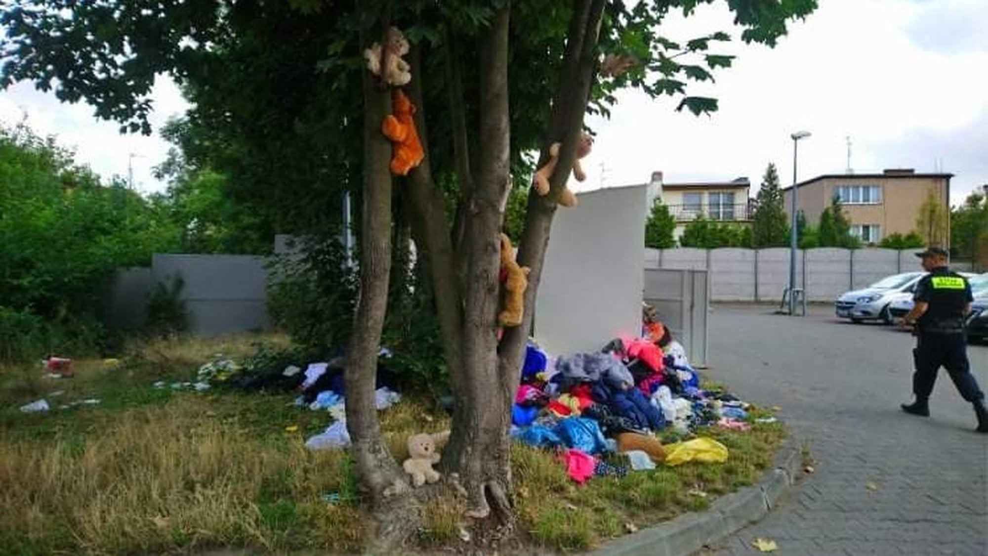 Poznań: Pluszowe miśki na… drzewie