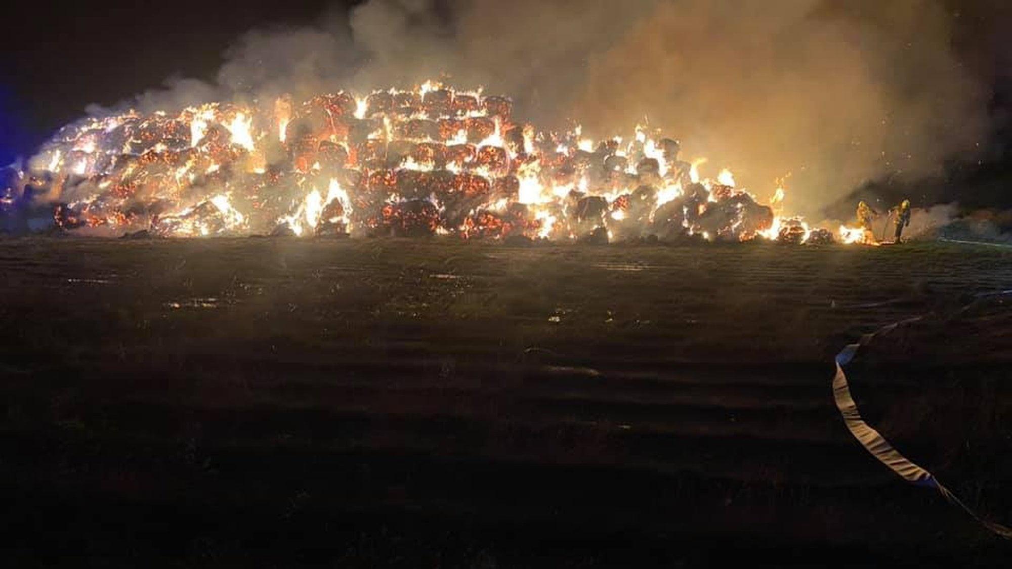 Stryków: Gigantyczny pożar na polu. W akcji brało udział 11 zastępów straży pożarnej
