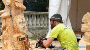 Poznań Wood Festival 2021 Wood Carving fot. Sławek Wąchała
