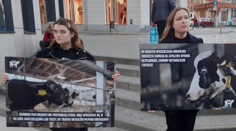 Białe Kłamstwa fot. Fundacja Viva!